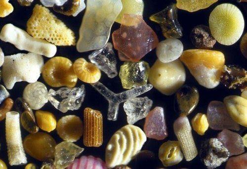 sand under a microscope